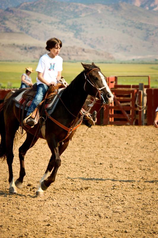 Garrett horse